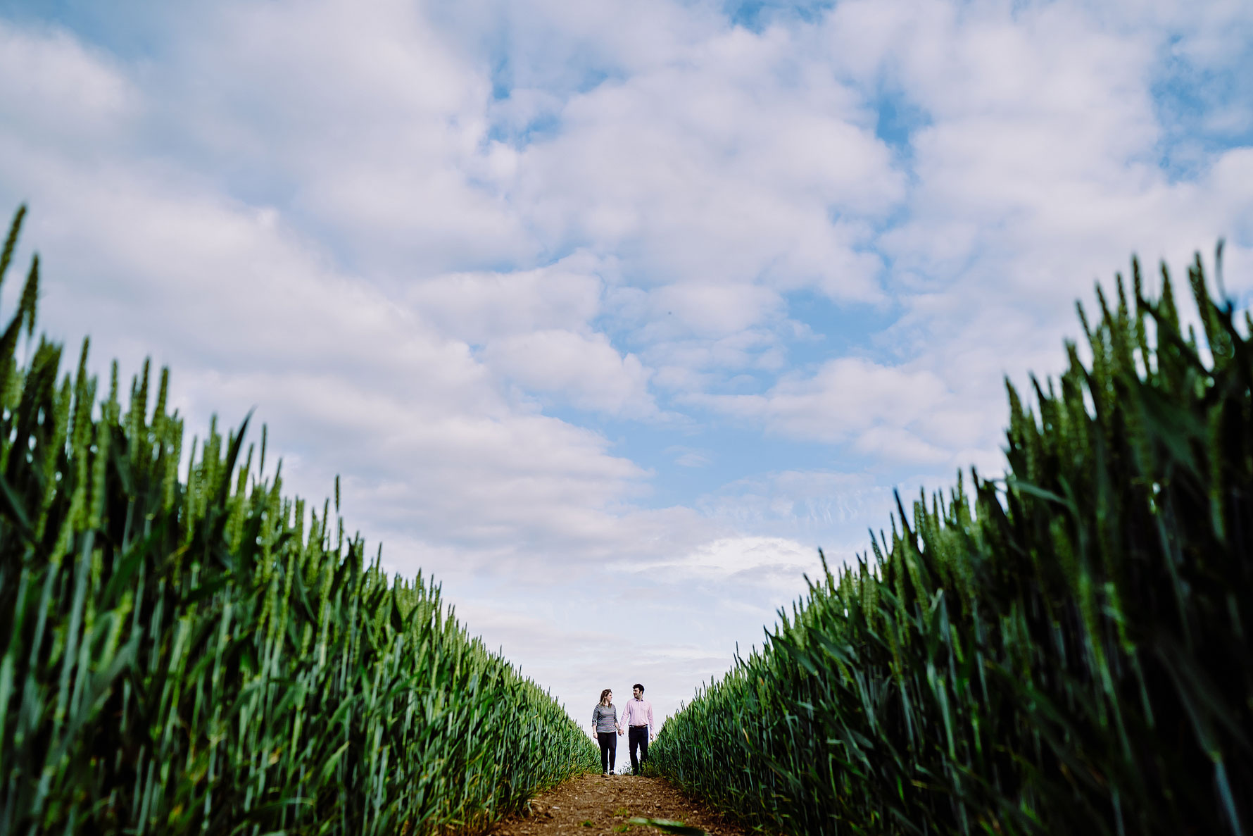 a symmetrical image of a couple walking through a cornfield