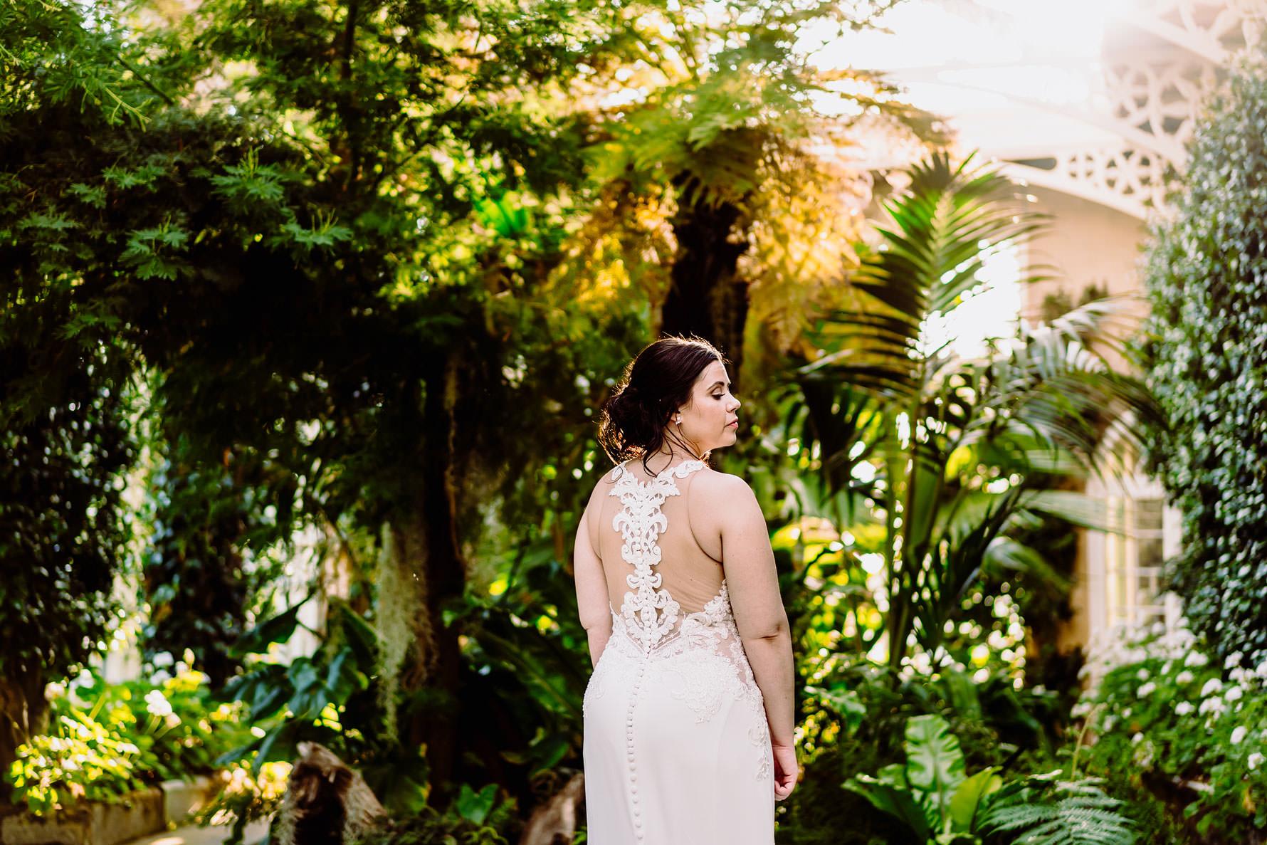 a beautiful pronovias wedding dress